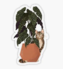 tiger at heart Transparent Sticker