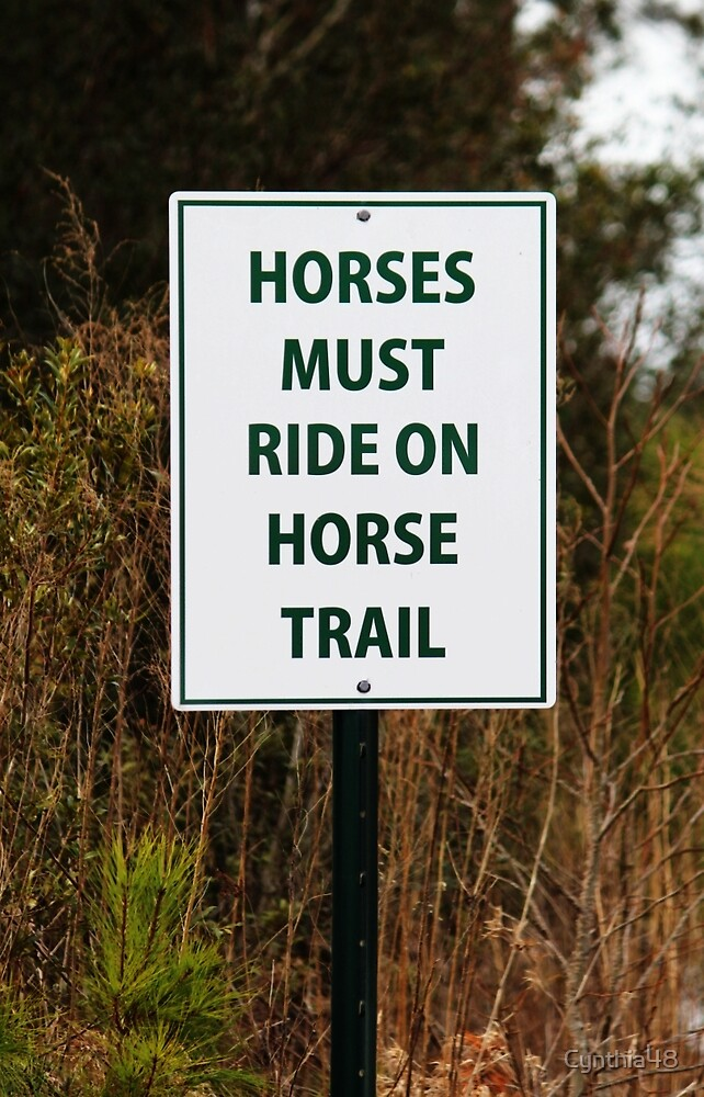 Funny Sign For Horses by Cynthia48