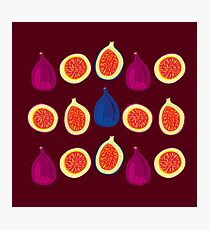 Sweet Fig Photographic Print