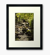 Southern end of Renfrew Ravine Framed Print