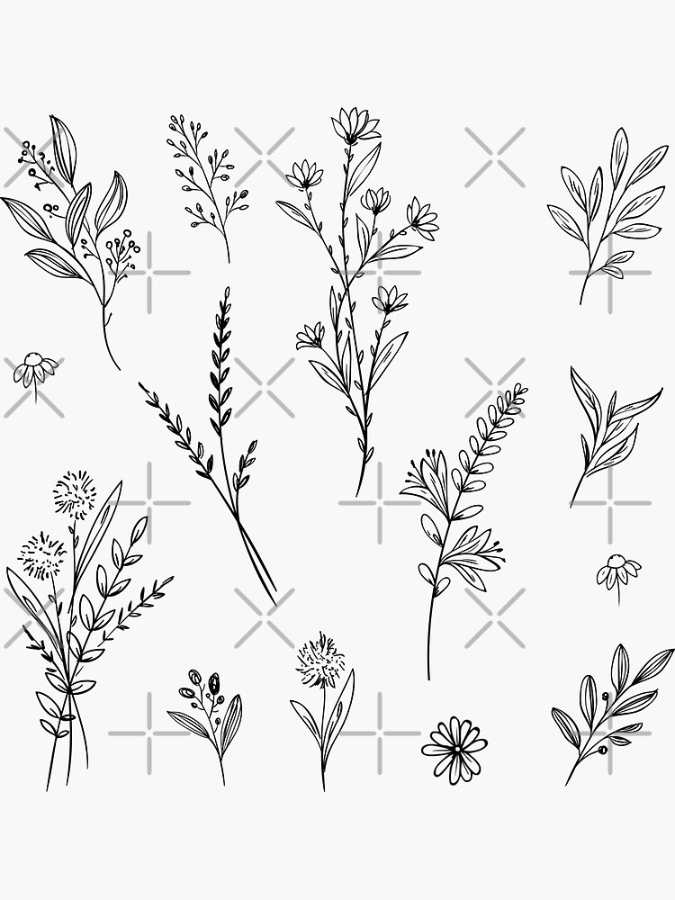 Handdrawn Wildflower Stickers by alexvoss