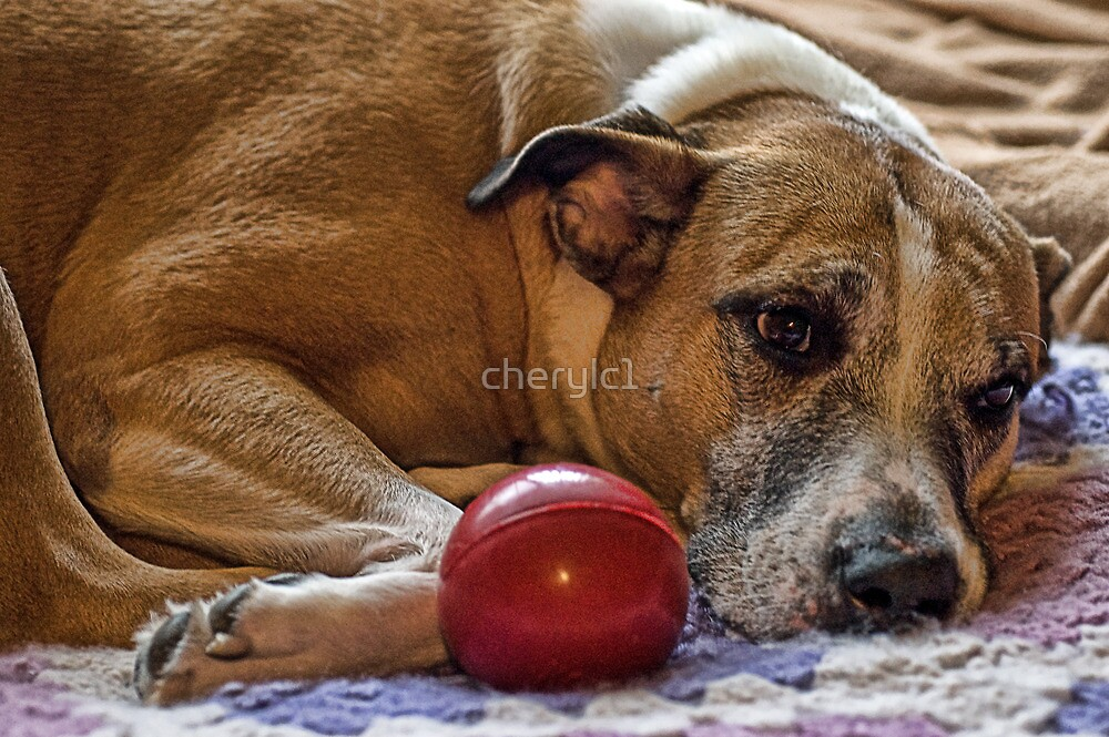 The Princess and her ball by cherylc1