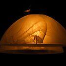 Lamp Shades by vbk70