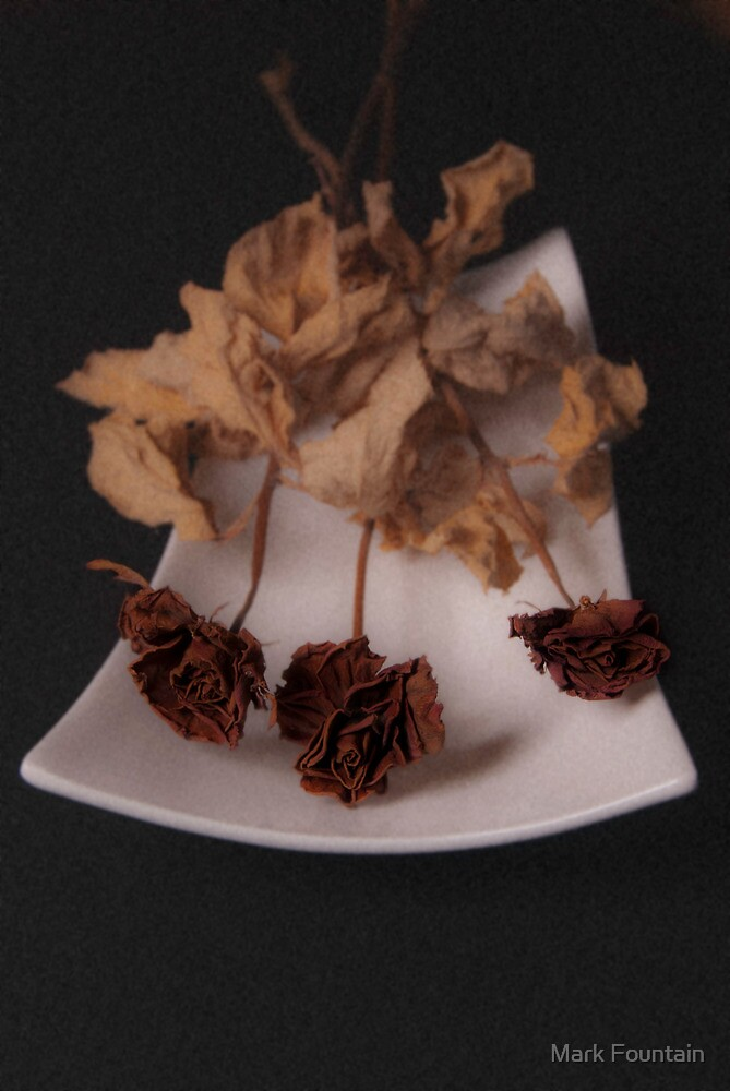 Dried Roses in Porcelain by Mark Fountain