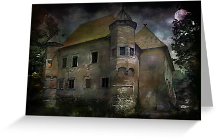 Castle in Dębno .... by andy551
