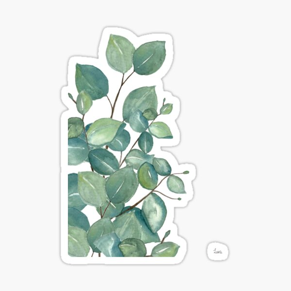 Eucalyptus Leaves  Sticker