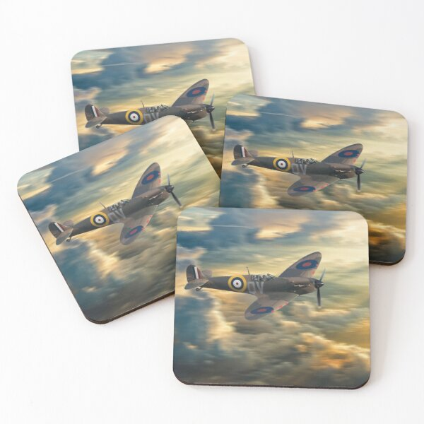 One of the few Coasters (Set of 4)