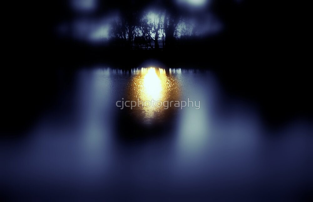 Shining Light by cjcphotography
