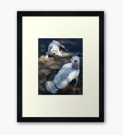 Molly you look prettier from this angle Framed Print