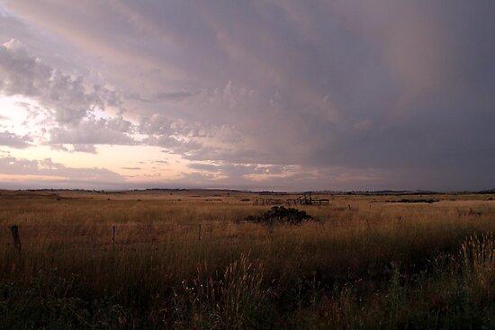 Storm brewing by Vikki Shedden Photography