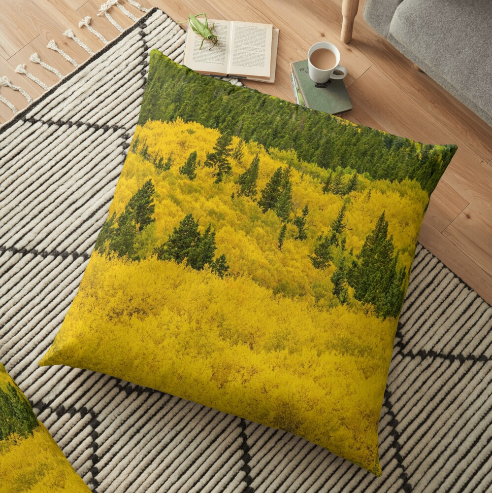 Colorado Gold Floor Pillow