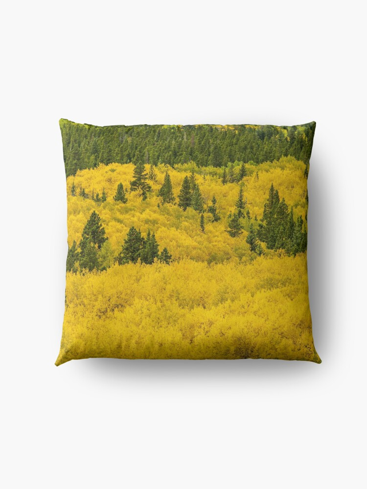 Alternate view of Colorado Gold Floor Pillow