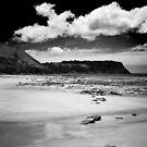 Table Cape, Tasmania by Rhana Griffin