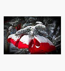 Christmas Bow Photographic Print