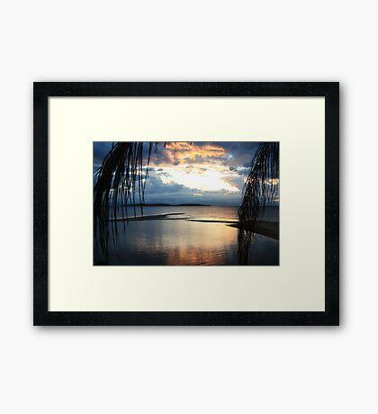 Palm Island dreaming Framed Print