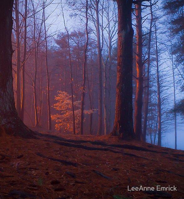 Glow by LeeAnne Emrick
