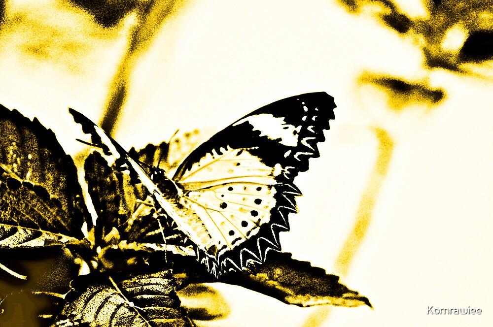 Art on wings by Kornrawiee