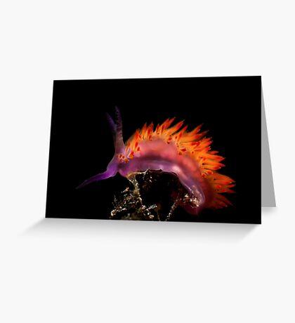 Flaming Tongue Greeting Card