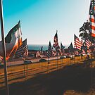 Malibu - Flags by Courtney Tomesch