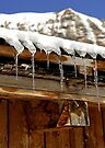Icicles on a wooden chalet, Switzerland by David Carton