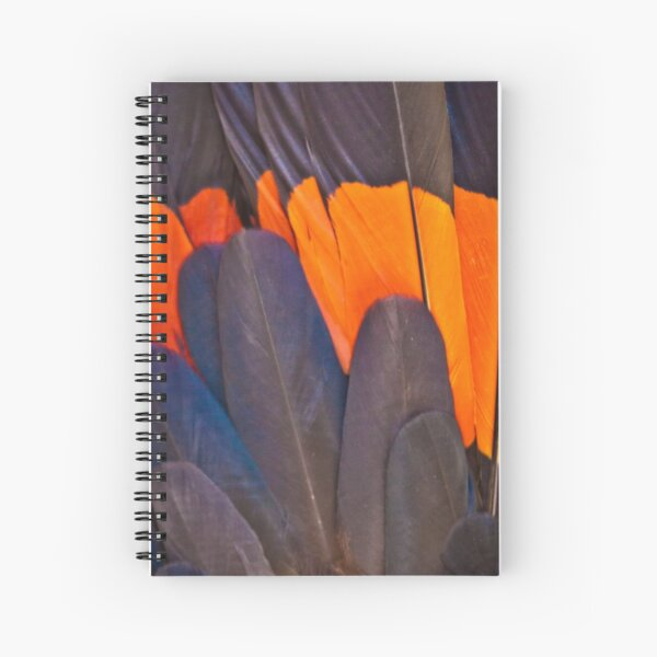 Red Tailed Black Cockatoo Feathers Spiral Notebook