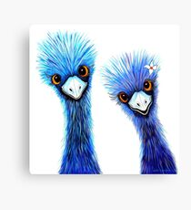 Quirky Emus Canvas Print