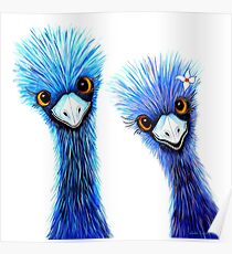Quirky Emus Poster