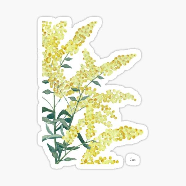 Wattle branch Sticker