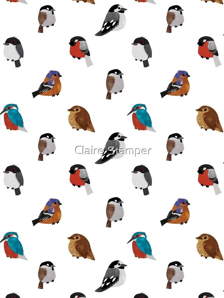 Beautifully Designed Bird Breed Images by bakura240