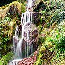 Hestercombe Waterfall by Dean Messenger