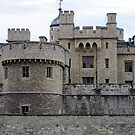 London - Tower of London by Darrell-photos