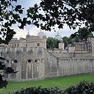 London - Tower of London 3 by Darrell-photos