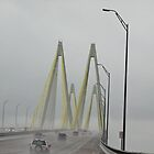 Baytown Bridge, In The Rain by SuddenJim