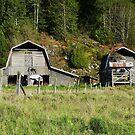 Old Barns by AnnDixon