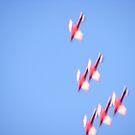 Planes by minikin