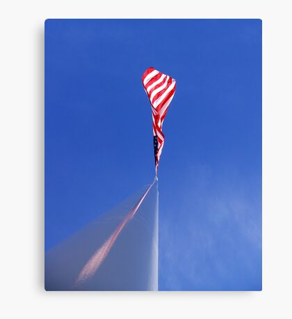 run it up the flagpole Canvas Print