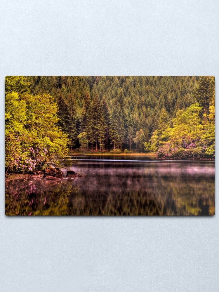 Alternate view of Forty Shades of Green - and a bit of Pink! Metal Print