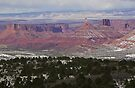 Castle Valley, Utah by Tamas Bakos