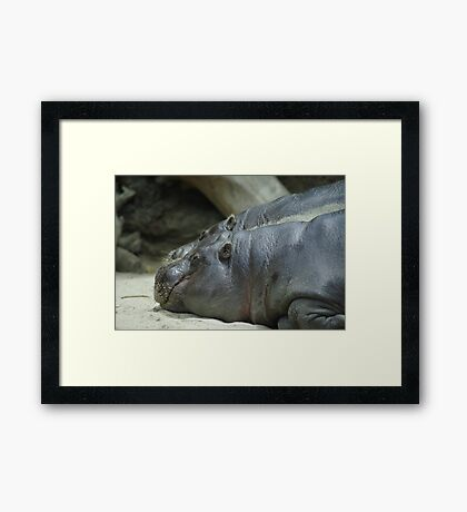 Just Another 5 Minutes Framed Print