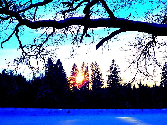 """Winter Twilight featured in """"Too Bright"""" by ©The Creative  Minds"""