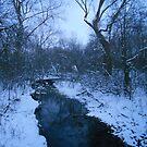 Winter Twilight at the Creek--Eastward  by MarjorieB