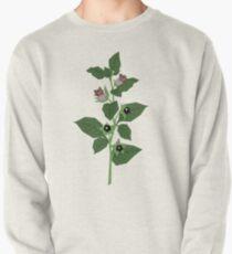 Deadly Nightshade Pullover Sweatshirt