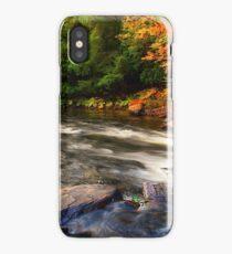 Fall, Autumn, Stream iPhone Case/Skin
