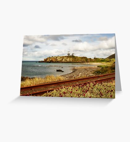 Doctor's Rocks & Daisies Greeting Card