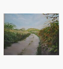 Country Lane in West Cork Photographic Print