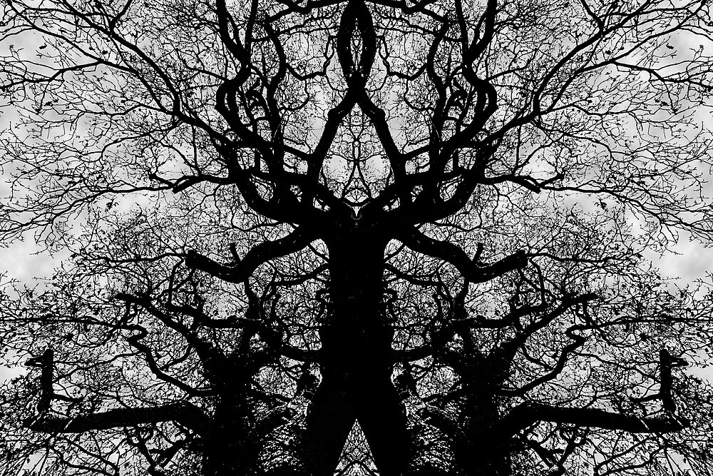 Tree or Monster? by Peter Tachauer