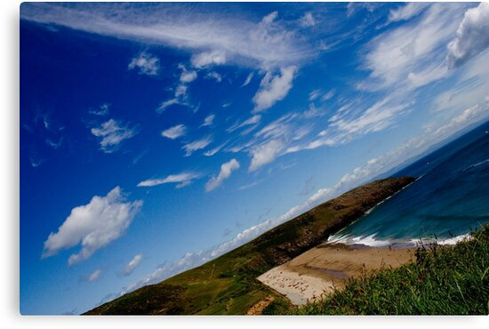 Love Beach in the Summer by Adam Costello
