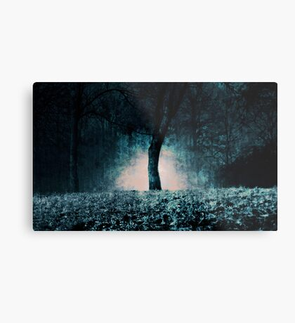 In the fog which surrounded the trees... Metal Print