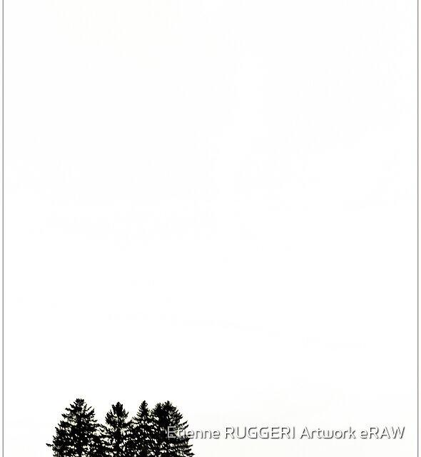 Five trees by Etienne RUGGERI Artwork
