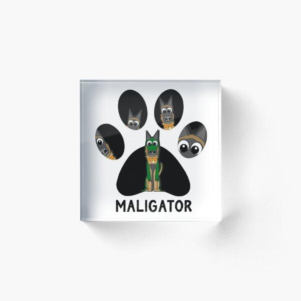 The Pawfect Maligator Acrylic Block